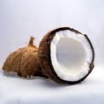 Kokosöl – hält Geist und Körper fit