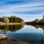 Angeln an der Donau – wo der Fisch zuhause ist